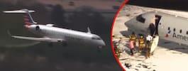 Flygplanet tvingas nödlanda – efter krock med rådjur