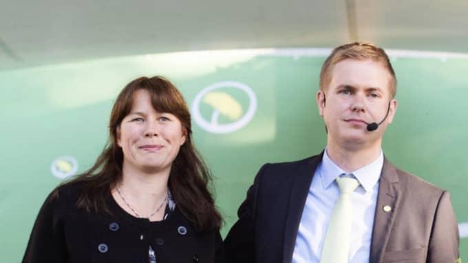 Han drev med regeringspartnern Miljöpartiet. Foto: Anna-Karin Nilsson