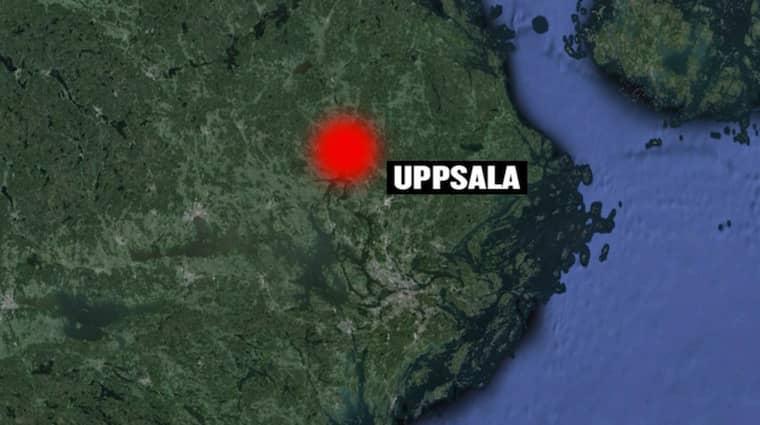 Det har varit en rörig natt i Uppsala med sex anlagda bränder.