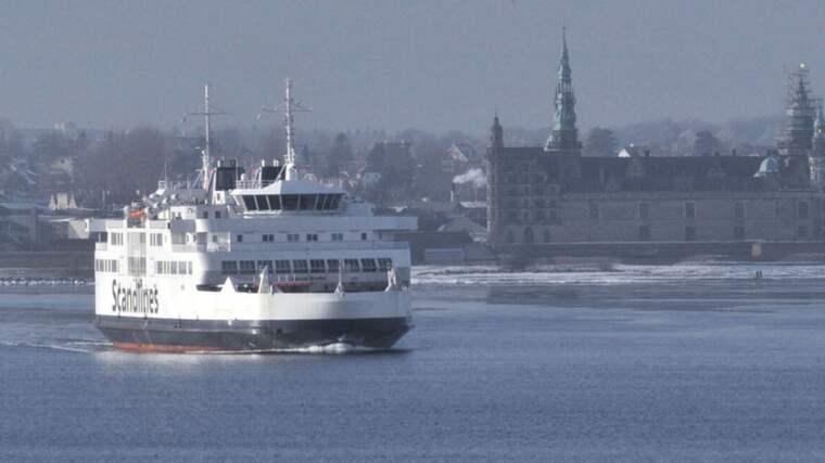 500 partysugna svenskar åkte över till Danmark - och skapade kaos. Omkring hälften av dem eskorterades av polis ombord på färjan tillbaka till Sverige. Foto: Lasse Svensson
