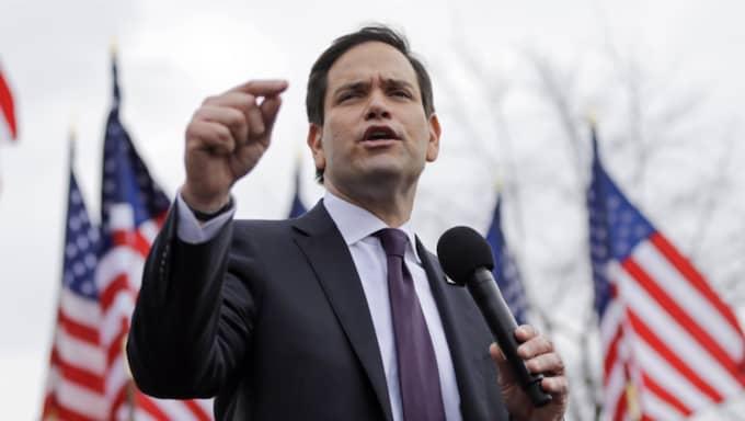 Enligt en uppgiftslämnare till CNN ska Marco Rubio lyckats säkra flera av Bushs viktigaste donatorer. Foto: Mark Humphrey