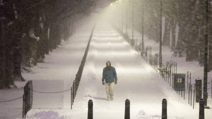 85 miljoner amerikaner väntas drabbas av stormen Jonas Foto: Michael Reynolds / Epa / Tt