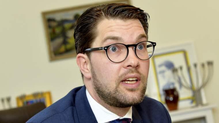 SD föreslår att det skulle gå att ta sig runt grundlagen via det så kallade nullitetsinstitutet, vilket skulle innebära att medborgarskapet inte dras tillbaka utan helt enkelt ogiltigförklaras. Foto: Jonas Ekströmer/TT
