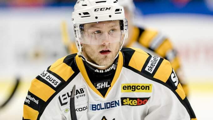 Foto: Jonas Ljungdahl / BILDBYRÅN