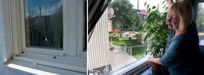 """FÖRTVIVLAD. Gänget har kastat råa ägg mot lägenheten - och eftersom balkongdörren var öppen hamnade en del ägg på hennes möbler i det nyrenoverade vardagsrummet. """"Jag blir förtvivlad"""", säger Marketta Tyrot. Foto: Sara Strandlund"""