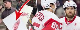 Rasar efter bilderna på Red Wings-logon