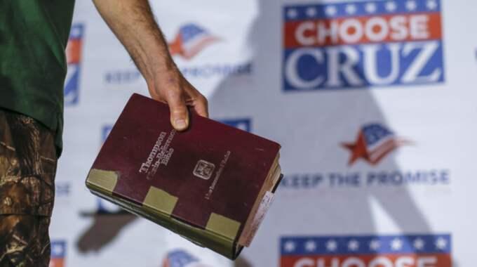 Ted Cruz är favorit bland många kristna högerväljare medan Marco Rubio är den som partietablissemanget helst vill se och som spås ha en bättre chans att ena partiet. Foto: Erik S. Lesser / Epa / Tt