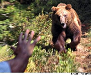 RAKT MOT ERIK. Björnen kommer i rasande fart mot Erik Fernström, men vänder tvärt det var ett skenanfall. Men situationen kunde blivit mycket allvarlig: Om en björn vill, kan han döda en människa väldigt snabbt, säger Erik Fernström. BILDSPECIAL: Så skyddar du dig mot björn