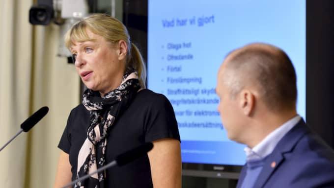 Gudrun Antemars förslag är långtgående. Foto: Marcus Ericsson / TT