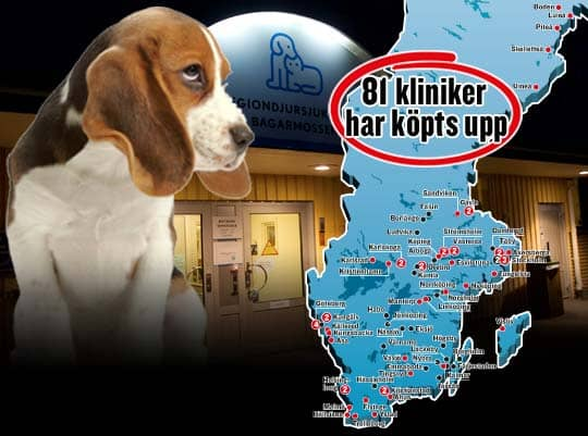 Samtidigt som riskkapitalbolag har tagit över marknaden har kostnaderna för veterinärbesök stigit kraftigt. Regionsjukhuset Bagarmossen är en av klinikerna som nu ägs av Fidelio. Foto: Colourbox/Sten Lindvall