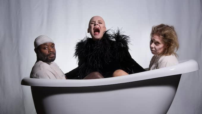 """Ensemblen i """"Pelikanen"""". Foto: Elisabeth Ohlson Wallin"""