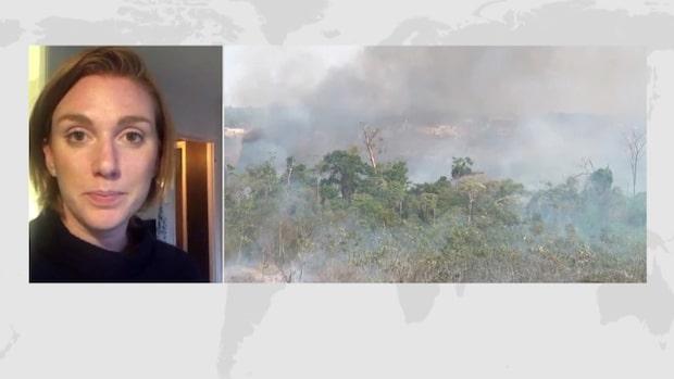 Swedbank miljardinvesterar i Amazonaskopplade Blackstone