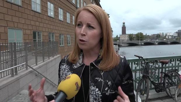 """Annie Lööf: """"S vill härska, söndra och splittra Alliansen"""""""