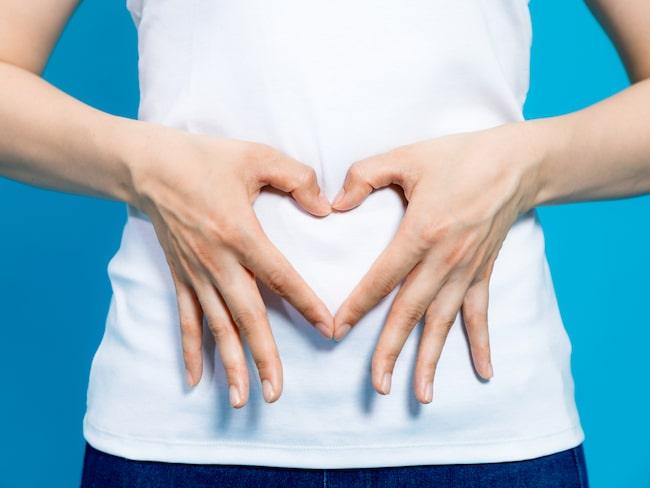 Även maghälsa fortsätter starkt under året.