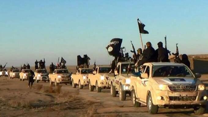 Enligt familjen var flickan på väg till Syrien för att ansluta till IS.