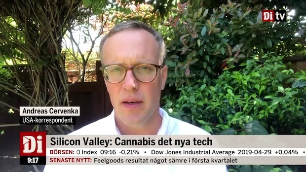 Silicon Valley: Cannabis det nya tech