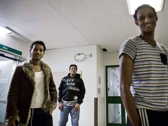 Kibreab Tekle, Asone Desta och Salomon Gebhiawet är frusterade. De kan bara äta och sova. Alla har varit här i sex månader och de får inte ens lära sig svenska. Foto: Lisa Mattisson