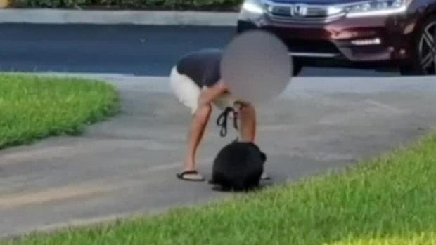 Här börjar han plötsligt misshandla hunden