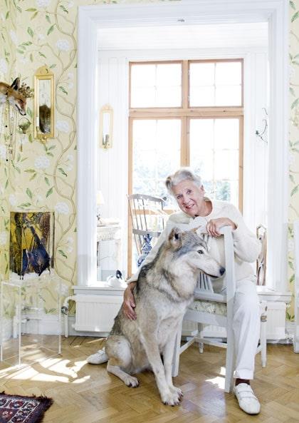 """VARG FRÅN DALARNA. """"Vargen är kung i huset! Här sitter jag varje morgon och kväll och pratar med honom"""", säger Kjerstin. Han är mitt totem och kommer från Dalarna precis som jag."""