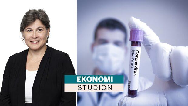 """Kopelman om virusets påverkan: """"Det grundläggande är vad som händer på arbetsmarknaden"""""""