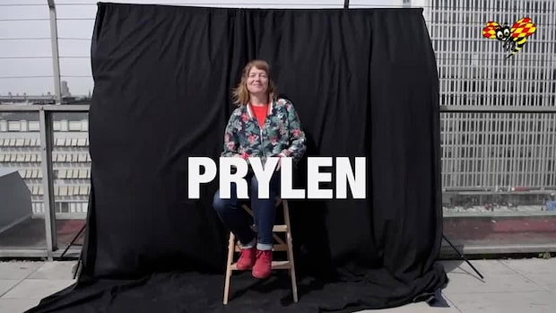 EU-kandidaterna: Malin Björk (V)