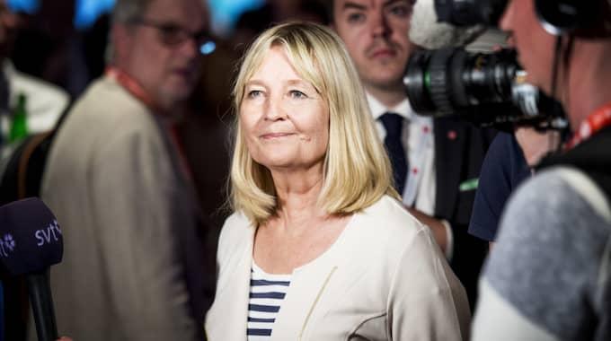 Marita Ulvskog får kritik efter bilden på Facebook. Foto: Jens L'Estrade