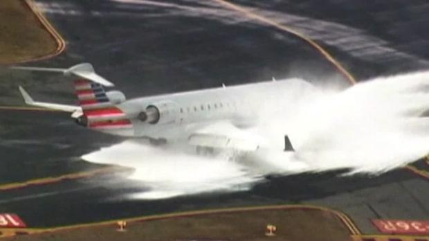 Flygplanet krockar med ett rådjur