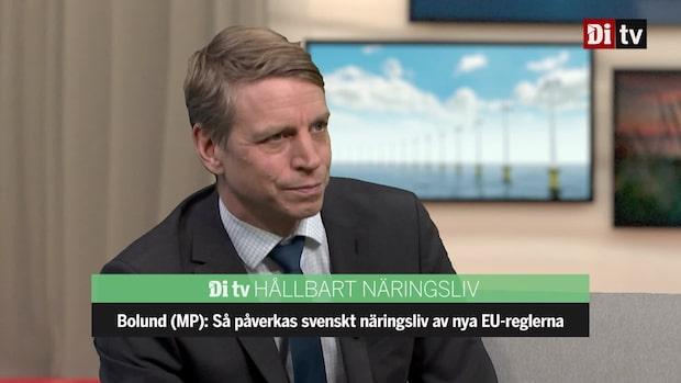 Se hela intervjun med Per Bolund (MP)