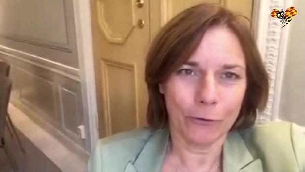 """Lövin: """"Fossila investeringar tillhör gårdagen"""""""