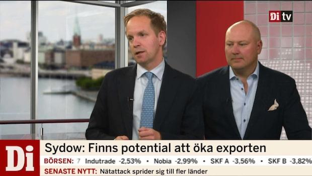 """Omvärldsstrategen: """"Finns potential att öka exporten"""""""