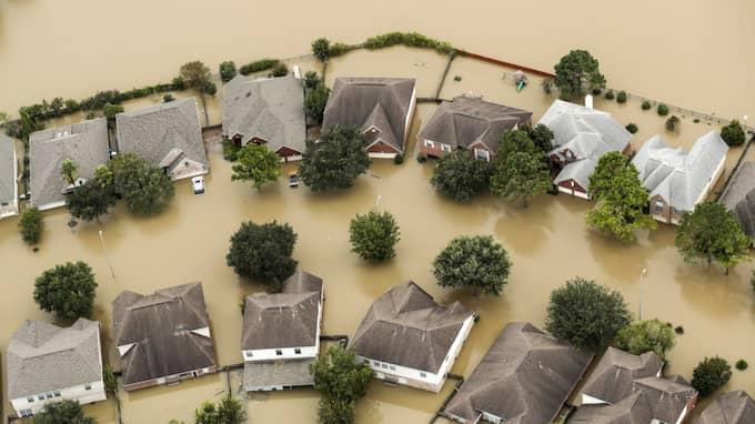 Harveys framfart kommer kosta enorma summor. Foto: BRETT COOMER / AP TT NYHETSBYRÅN