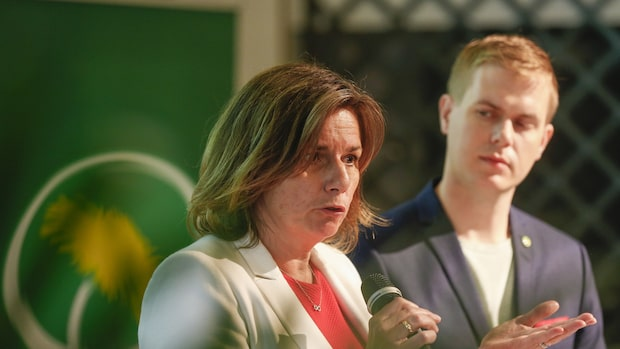 MP-ledningens migrationskompromiss splittrar partiet