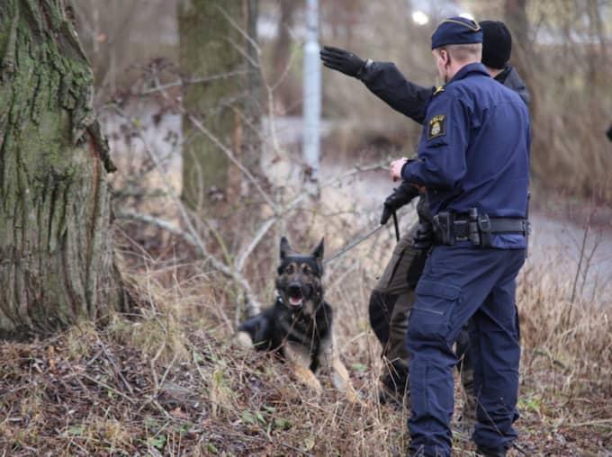 Polisen på plats fick senare förstärkning av både tekniker och hundpatruller som sökte igenom området. Foto: Janne Åkesson/Swepix