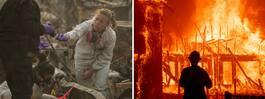 Fler döda hittade efter bränderna i Kalifornien