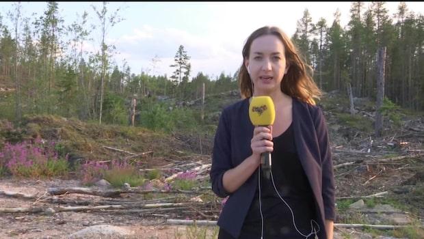 Radiomasten vid Sveg riskerar att falla