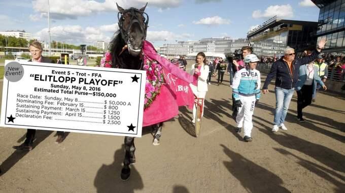Förra årets vinnare av Elitloppet, Magic Tonight, och kretsen kring hästen. Till årets upplaga har amerikanerna ett eget kvallopp. Foto: Kanal 75
