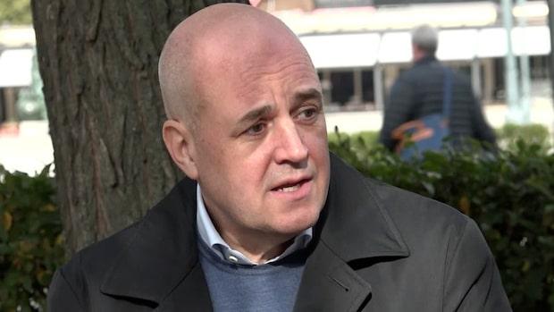 Fredrik Reinfeldt: Polisen kan inte lösa enklare brott