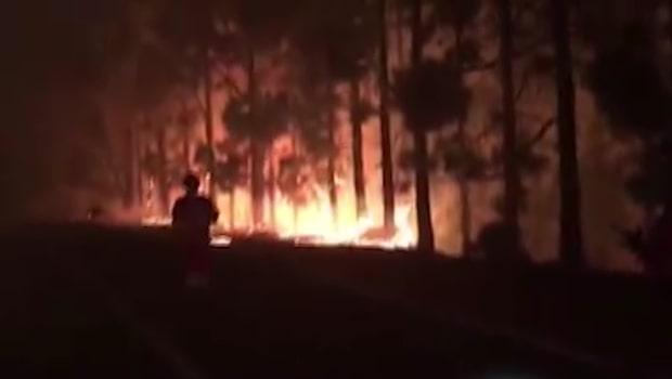 Hundratals flyr brand Kanarieöarna