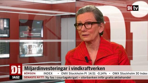 Unger Larsson: Det har investerats över 60 miljarder kronor i vindkraft
