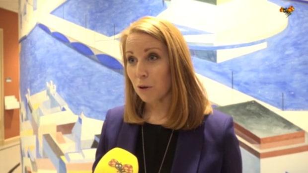 """Annie Lööf (C): """"Vi alla väntar nu på talmannens besked"""""""