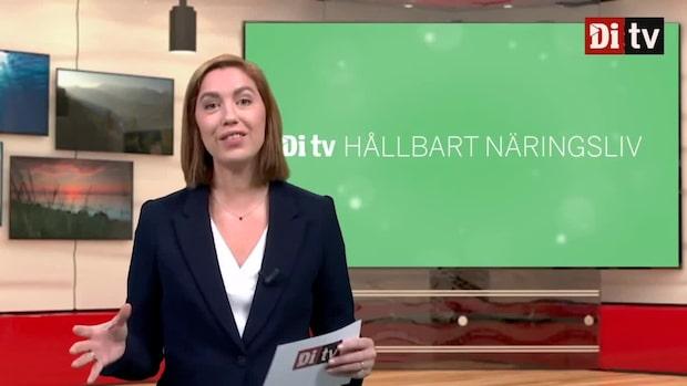 Di TV Hållbart näringsliv 2 december - om de nya proteinkällorna