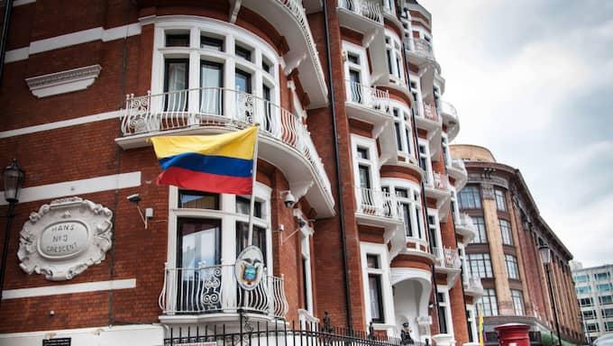 Ecuadors ambassad i London. Foto: Foto: Nina Eirin Rangøy / NINA E. RANGOY