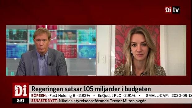 Landeborn om budgetpropositionen: Företaget Sverige fortsätter rulla på
