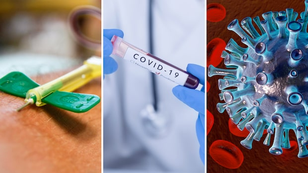 Nu kan nästa fas inledas för att testa vaccin