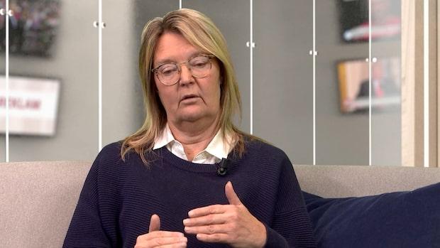 """EU-experten: """"I Bryssel garvar man åt Sverige"""""""