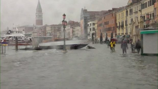 """Venedigs borgmästare: """"Situationen är dramatisk"""""""