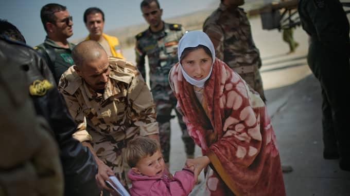 En grupp yazidiska barn evakueras från Sinjarberget, som omringades av IS i augusti 2014. Foto: MARTIN VON KROGH/EXPRESSEN / MARTIN VON KROGH/EXPRESSEN