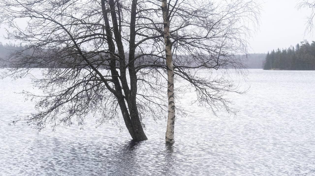 Stora översvämningar i Värmland rapporterade
