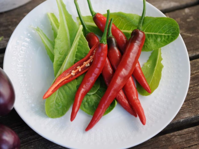 köpa chili på nätet
