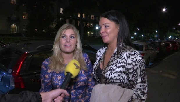 Wahlgren och Wistam får kritik